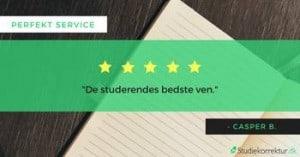 God oplevelse med Studiekorrektur og speciale